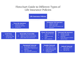 Term Life Insurance Rates Chart Understanding The Different Types Of Life Insurance Policies