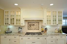 Good Custom Hood And Glass Front Cabinets Traditional Kitchen Great Ideas