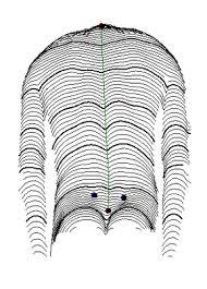 Resultado de imagem para rasterstereographia
