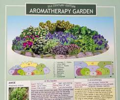 Aromatherapy Scent Chart Aromatherapy Garden Seed Collection