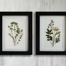 framed set of 2 herbarium botanical prints artworks real on botanical wall art set of 2 with 20 framed botanical wall art free printable royal blue and yellow