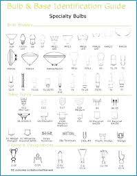 Different Light Bulb Shapes Seragam Co