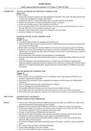 Download Coordinator, Travel Resume Sample as Image file