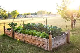 build a raised garden bed. Diy Raised Garden Bed Ideas Finley And Oliver Our Beds Build A