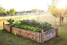 Diy Raised Garden Bed Ideas The Garden Inspirations