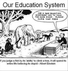 Einstein Quote On Education Fish Quotes By People