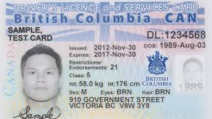 The News Cbc With Government 'x' Marks Spot New Option Gender-neutral Id On