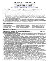 Sql Resume Example Database Administrator Resume Sample Oracle Dba Samples Network Pdf 9