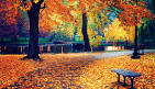 Images & Illustrations of fall