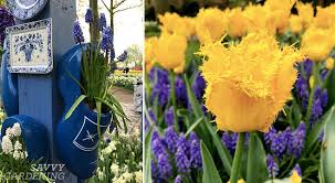 bulb planting design tips and