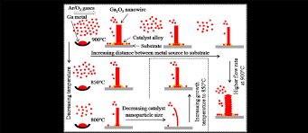 growth schematic for diameter tuning of ga 2 o 3 nanowires at growth schematic for diameter tuning of ga 2 o 3 nanowires at various scientific diagram
