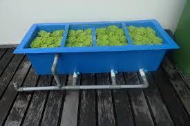 how to make diy koi pond filter
