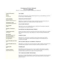 Resume Executive Summaries Free Executive Summary Template How To Write An For A Resume