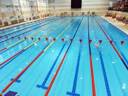 Обучение плаванию Спортивно оздоровительные группы 7 причин почему стоит заняться плаванием