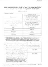 Отчет о предпринимательской практике dominoplatje Отчет о предпринимательской практике