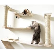 wall mounted cat furniture.  Mounted CatastrophiCreations The Roman Cat Fort Hammock Climbing Activity WallMounted  Tree  B01DE63FEO In Wall Mounted Furniture