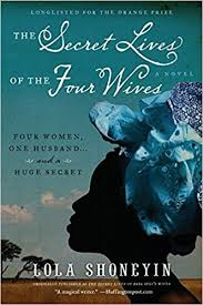amazon the secret lives of the four wives a novel 9780061946387 lola shoneyin books