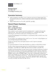 Executive Summary Layout Luxury Resume Executive Summary Sample Resume Executive Summary 17