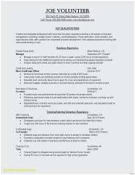 Director Of Engineering Resume Simple Sample Engineering Resume Popular Best Engineering Resume Templates