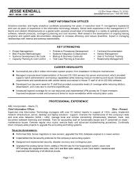 Chief Information Officer Sample Resume Templates Executive Resumeplate Basic Cio Sample Chief Information 1