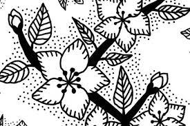 Immagini Di Fiori Facili Da Disegnare Latest Fiorilegio Fiori With