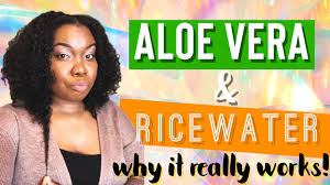 aloe rice water why it really works