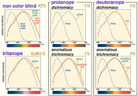 <b>Color</b> Universal Design (CUD) / Colorblind Barrier Free