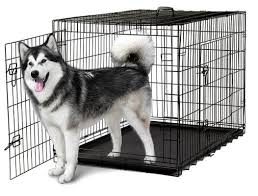 best crate
