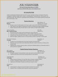 One Page Resume Lovely Resume Templates For Word Lordvampyr