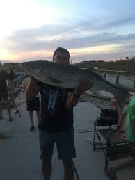 The Catch Of A Lifetime Delaware Surf Fishing Com