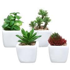 best indoor office plants. small indoor plants for office desk best 25 artificial succulents