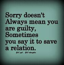 Apology Quotes Interesting Apology Quotes For Girlfriends Sandy Peg It Board