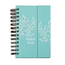 Monthly Bill Budget Amazon Com Boxclever Press Budget Book Monthly Bill Organizer