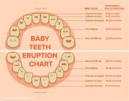 Family Dentistry Woodruff Pro Grin Dental Baby Teeth