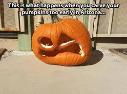 early-pumpkin-carving-in-arizona-1412137261.jpg via Relatably.com