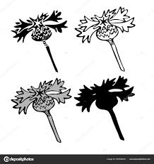 расторопши цветы в черно белом стиле может использоваться для