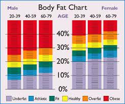 Body Fat Chart Women Healthy Weight Flow Charts