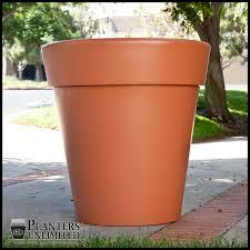 tall terracotta planter. Contemporary Planter Click To Enlarge On Tall Terracotta Planter Hooks U0026 Lattice