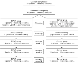 Flow Chart Of Extracorporeal Shock Wave Therapy Eswt For