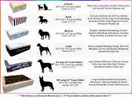English Golden Retriever Weight Chart 29 Explanatory Golden Retriever Height Chart