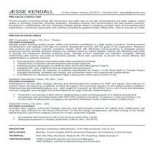 It Consultant Resume Examples Technical Consultant Resume Example Beauteous Resume Sales Consultant