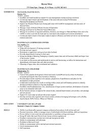 Master Data Resume Samples Velvet Jobs
