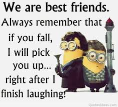 Funny Best Friend Quotes Enchanting Funny Best Friend Quotes And Sayings
