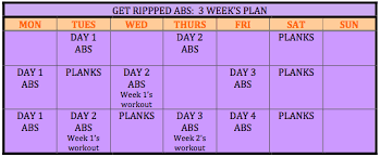 3 Weeks To Six Pack Abs With The Total Gym Total Gym Pulse