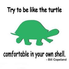 Turtle Quotes Try To Be Like The Turtle Quote Picture 12