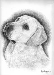 Eccezionale Immagini Di Cani E Gatti Insieme Disegni Colorati