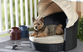 Outdoor Dog Bed With Canopy Outdoor Dog Bed With Canopy Indoor ...
