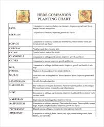 Companion Chart Companion Planting Chart 9 Free Excel Pdf Documents