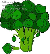 broccoli clipart. Interesting Broccoli Throughout Broccoli Clipart
