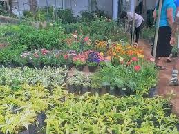 garden centers near me. Fine Garden Plant Nursery Bergen County Nj Throughout Garden Centers Near Me E